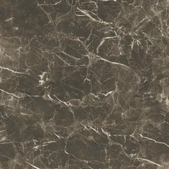 STEVOL | 2048 60X60, ELITE POLISHED MARBLE 60X60, STEVOL, Індія